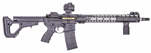 SV-16 AR Custom Rifle